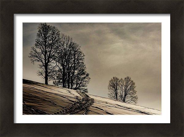 Walk through winter wonderland in Werfenweng/Salzburger Land, Austria