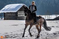 Horseback rider guides horse through the winter wonderland in Salzburger Land