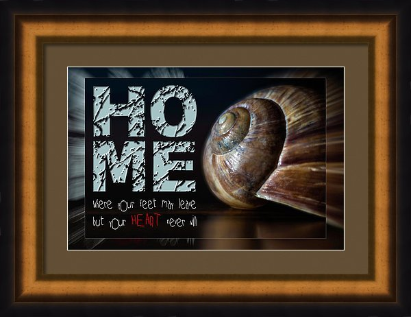 Card snail house with quote home in frame