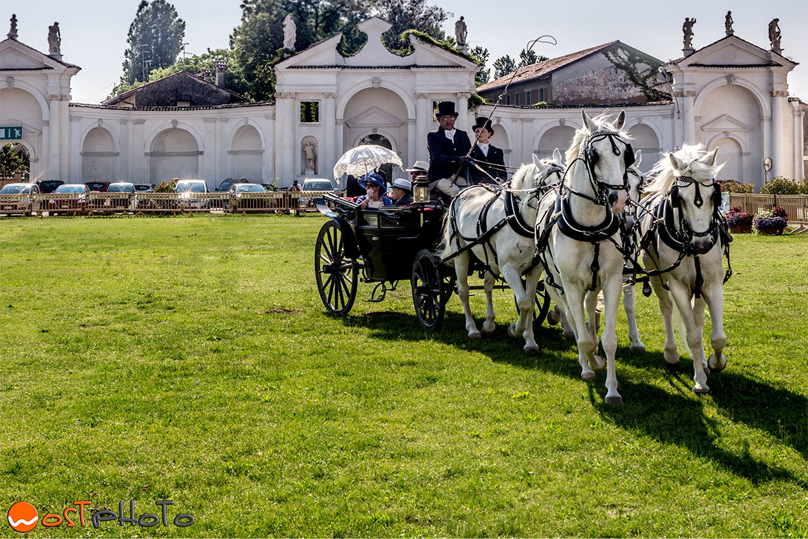 Horses and carriages at the Villa Manin in Passariano/Codroipo in Friuli/Italy