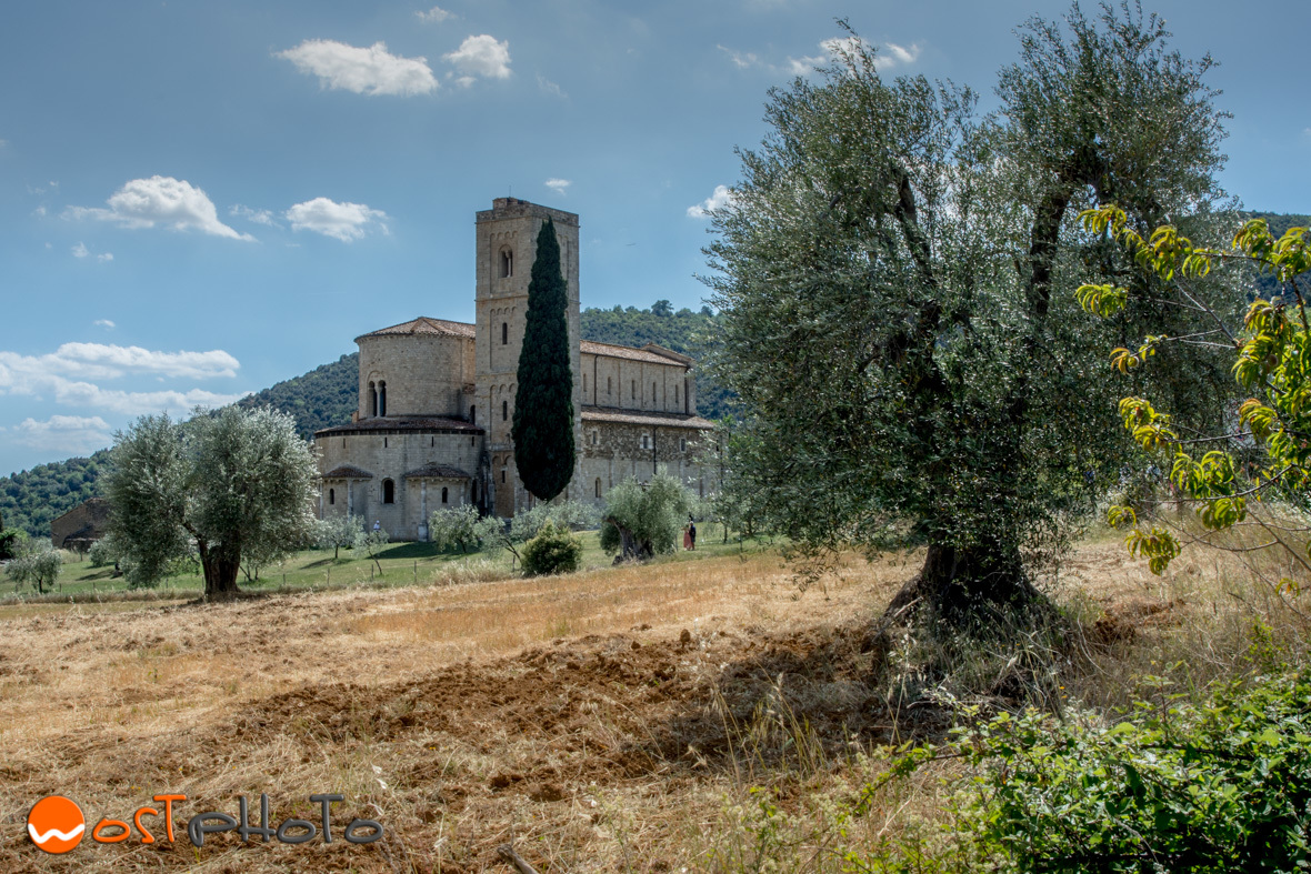 Gorgeous abbey in the middle of olive trees