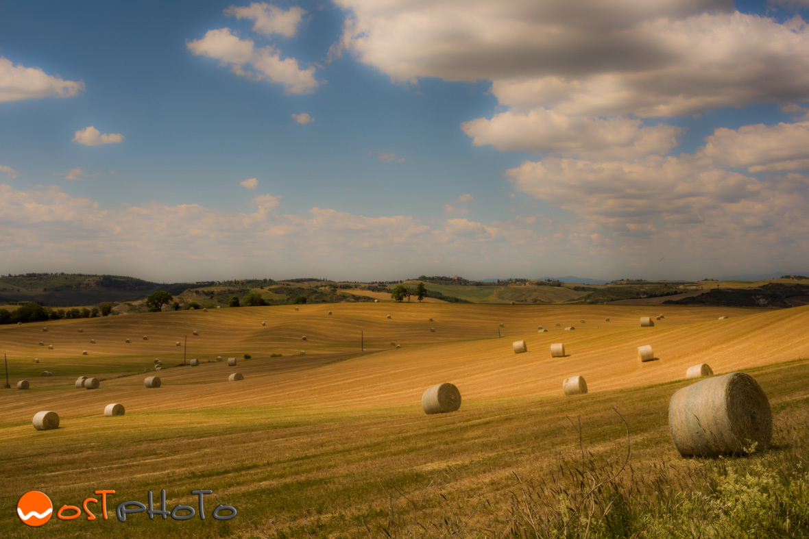 Italy, Tuscany, Val d'Orcia, Landscape photography, wostphoto, wolfgang stocker