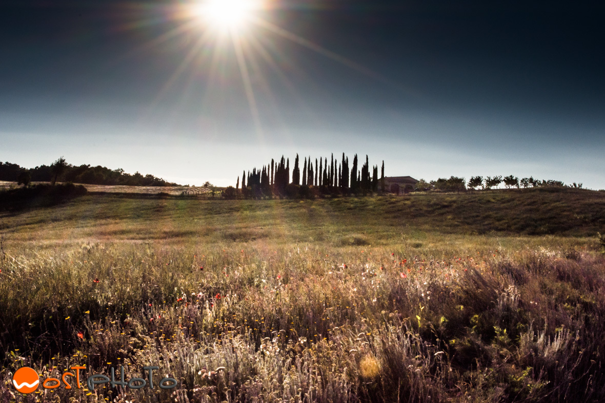 Tuscany, Val d'Orcia landscape