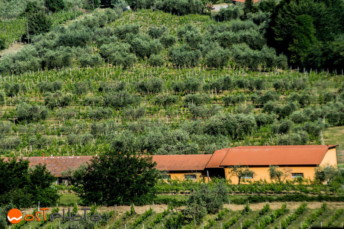 Val d'Orcia, Tuscany, Italy, wostphoto, wolfgang stocker, landscape, photography, photo art, fine art