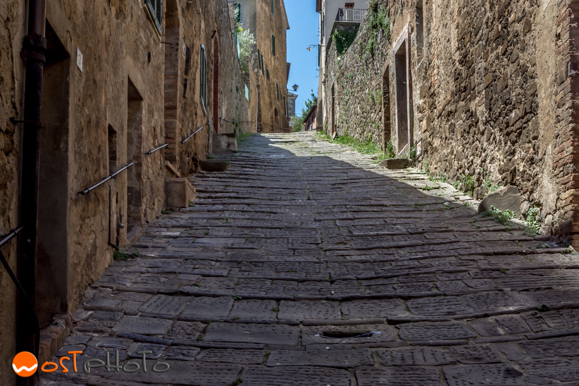 Italy, Tuscany, Val d'Orcia, Montalcino, Brunello, wine, wostphoto, wolfgang stocker
