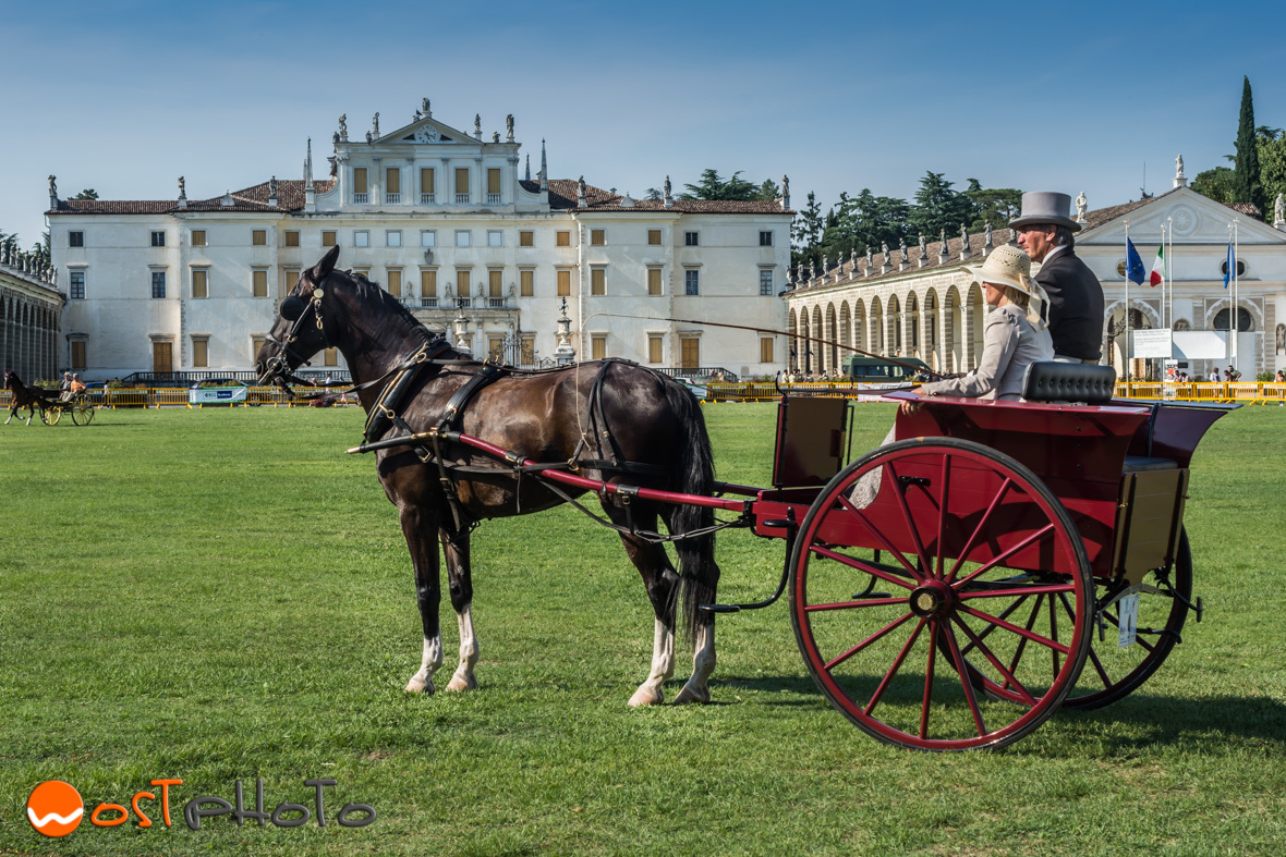 Horse with carriage in front of Villa Manin in Codroipo in Friuli in Italy