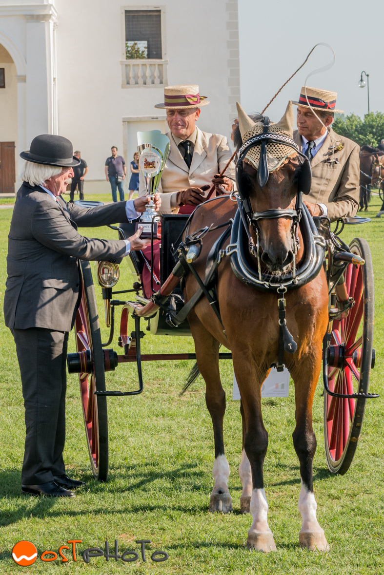 Horse and carriage, wostphoto, wolfgang stocker, Villa Manin, Friuly, Italy, Tradition Attack, Competition