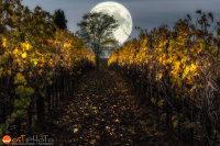 Luna, full moon, composite, La Luna, wost, wolfgang stocker, wostphoto