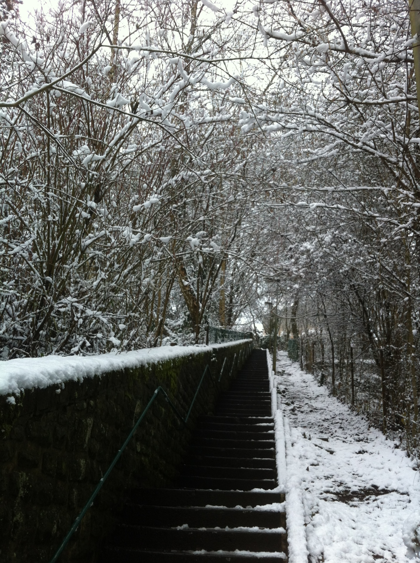 A staircase covered in snow. Great fun to run up on !