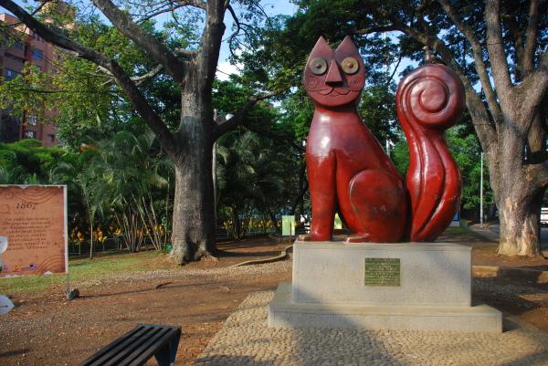 El Gato del Rio