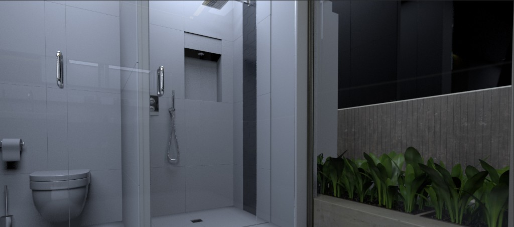 MASTER'S TOILET AND BATH (2)