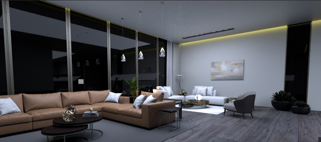 RECEPTION AREA AND LIVING AREA (4)