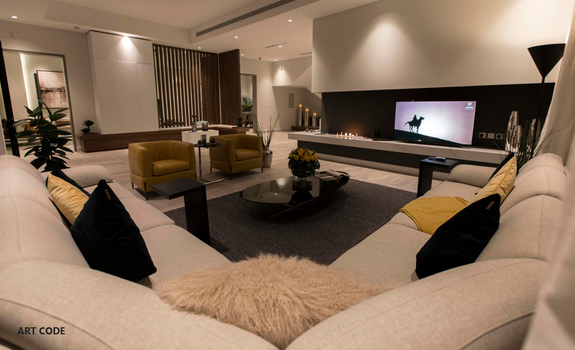 LIVING AREA (12)