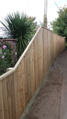 Feather edge fencing in North Dorset