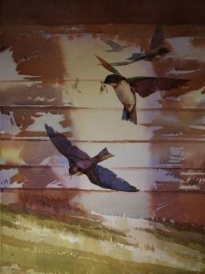 Swallow Hunting
