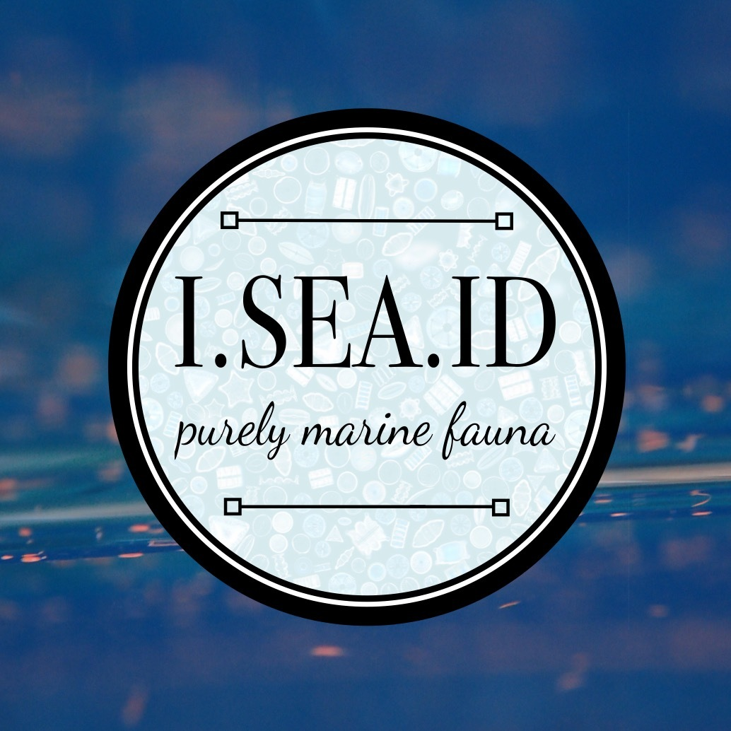 Launch of I.SEA.ID