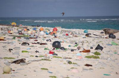 Clean Streets, Clean Seas