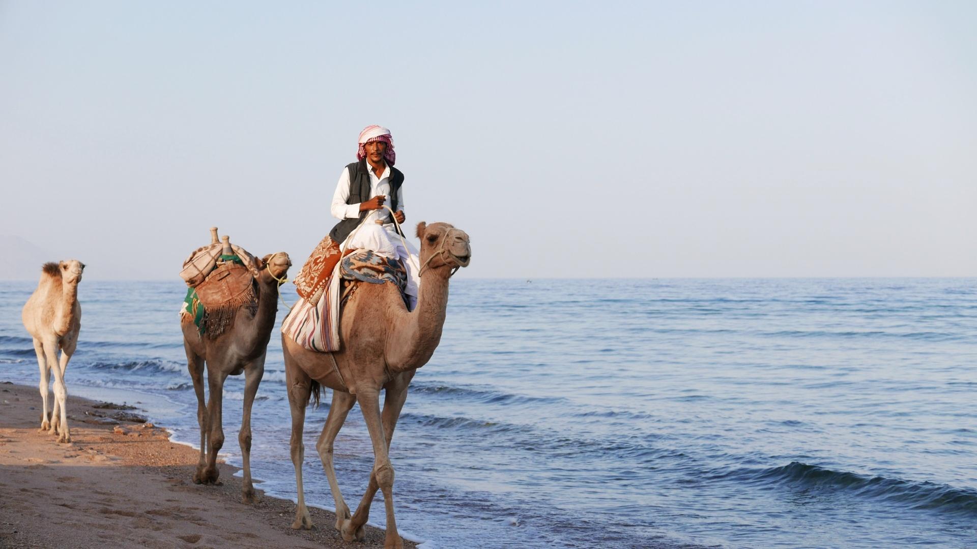 I.SEA. Visits Israel and Egypt