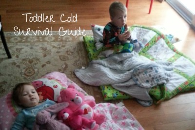Toddler Cold Survival guide