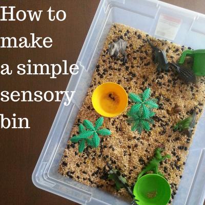 Simply Sensory Bin