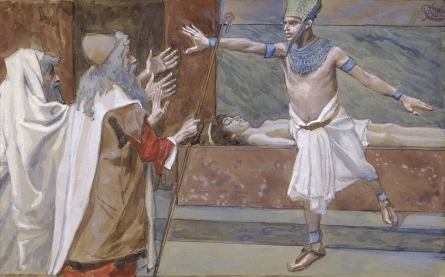 REASON 40 - EGYPTOLOGY (IPUWER PAPYRUS)