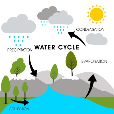 REASON 91 - WATER CYCLE