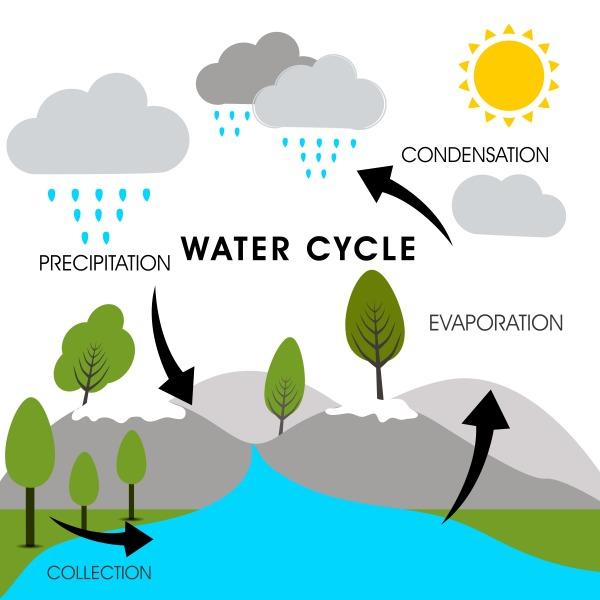 REASON 91 - WATER CYCLE