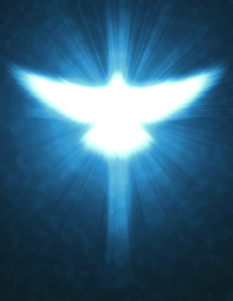 REASON 98 - WITNESS OF THE HOLY SPIRIT