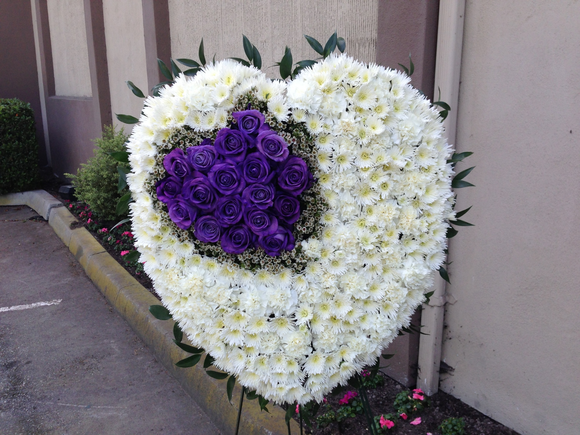 Hearts Eternal From$280
