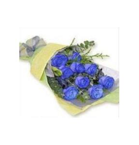 Blue linger  hk-004
