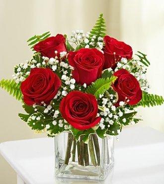 Loves Embrace Roses- Red