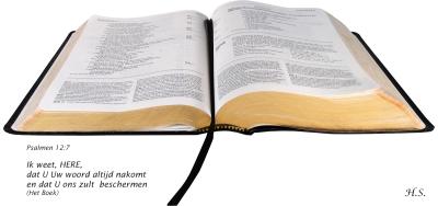 Bijbelplaatjes