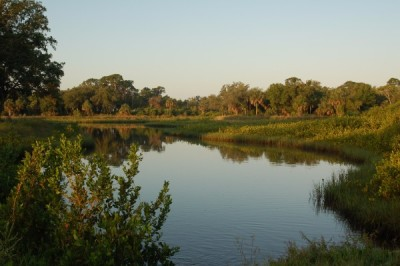 Ecosystem Restoration and Mitigation Image