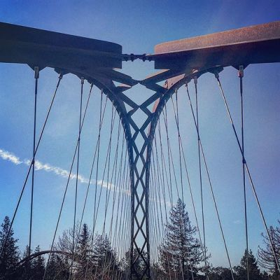 Day 44, Suspension Bridges FTW