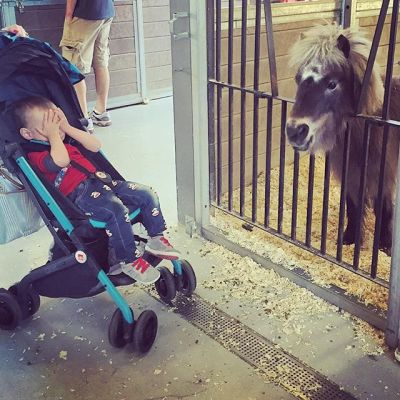 Day 44, Everett meets mini pony. Can't even.