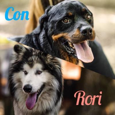 Con & Rori