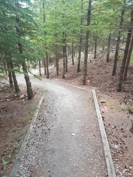 Mountain Park Path