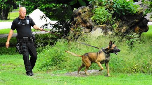 SentrySix introduces K-9 Teams to help with South Texas Security Operations