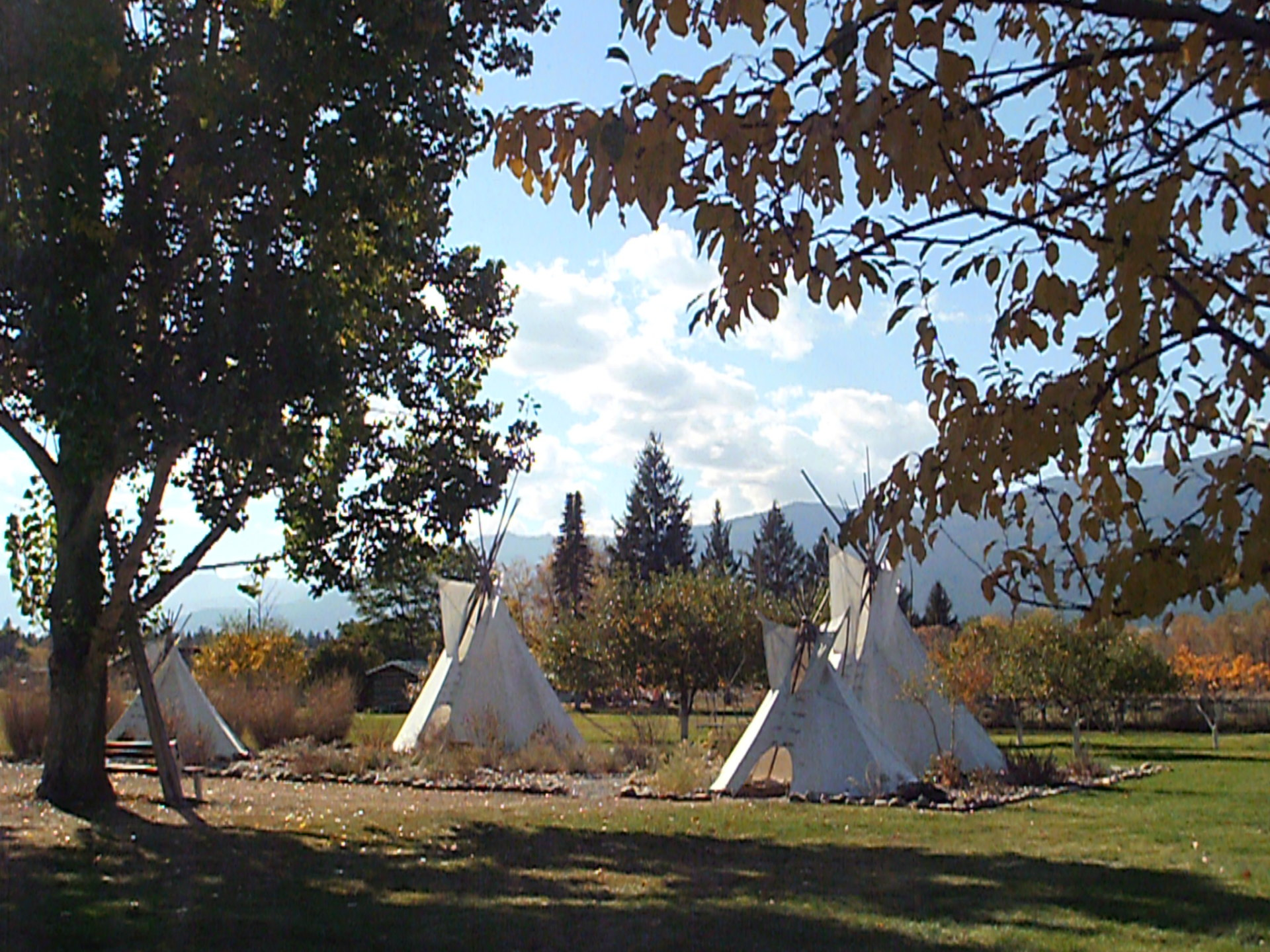 Tipis shown among native plantings