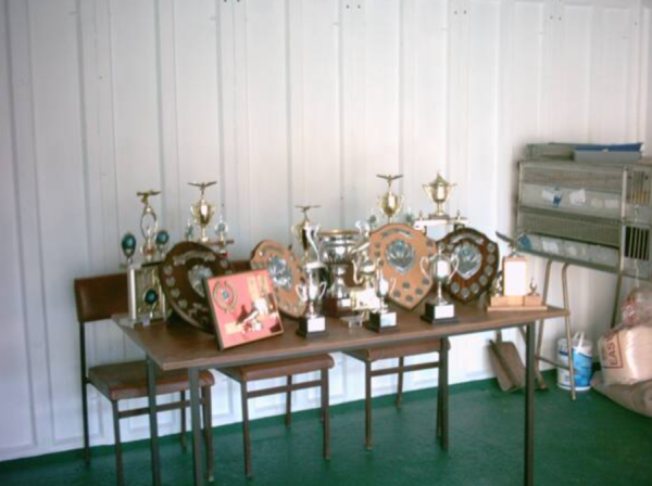 Some of the many trophies that the society give out.