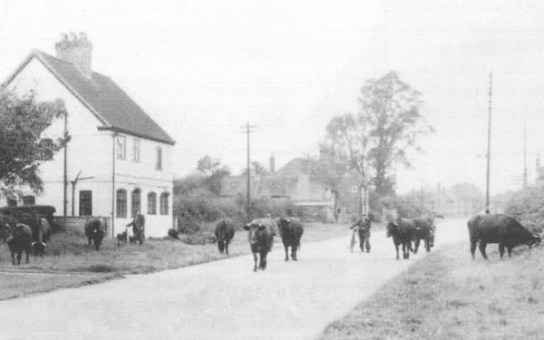 Bonner Lane in a bygone era.