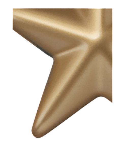 2756 Metallic Gold