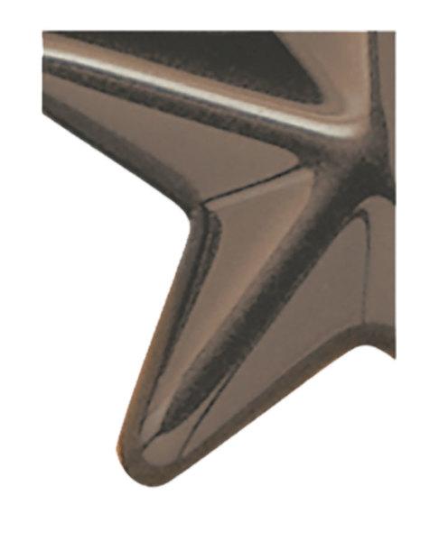 3120 Medium Bronze