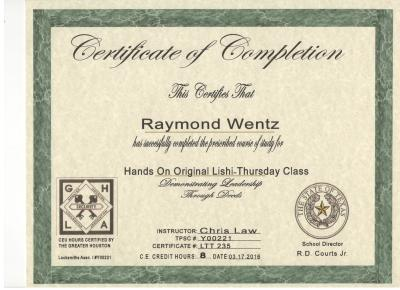 Quick-Pick Locksmith Ray's Lishi I Certification