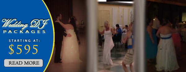 Read more about Wedding DJ Services