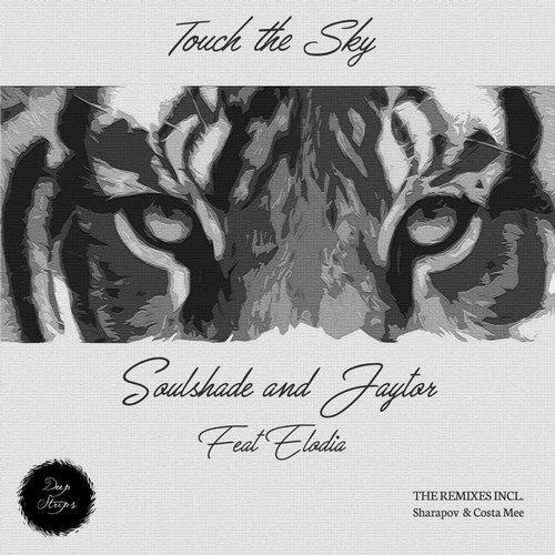Soulshade & Jaytor ft. Elodia - Touch The Sky