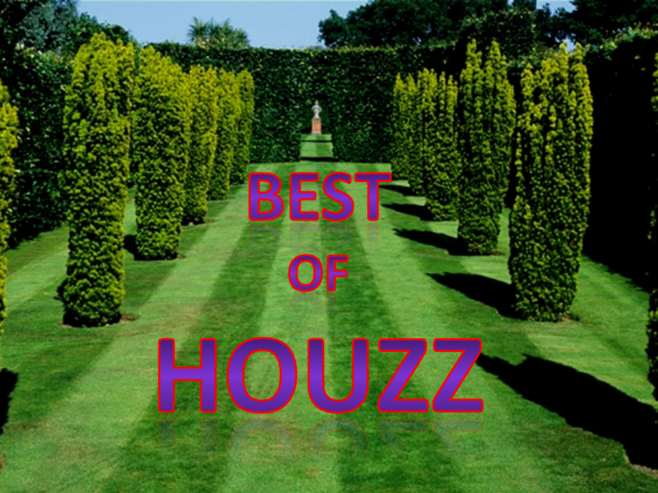Best of Houzz Could Be Best of B.S.