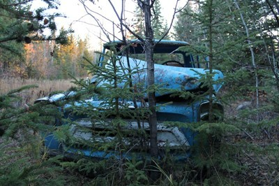 Old wreck in the bush