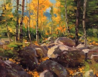 11 x 14    Aspen & Rocks Study    Oil