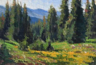 6 x 9     Mountain Valley     Oil